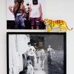 dosfamily-picture-wall-withtiger
