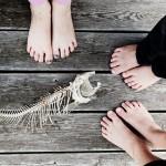 dosfamily-dead-fish
