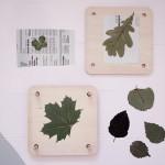 dosfamily-flowerpress1