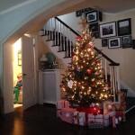 dosfamily-christmas-toilet