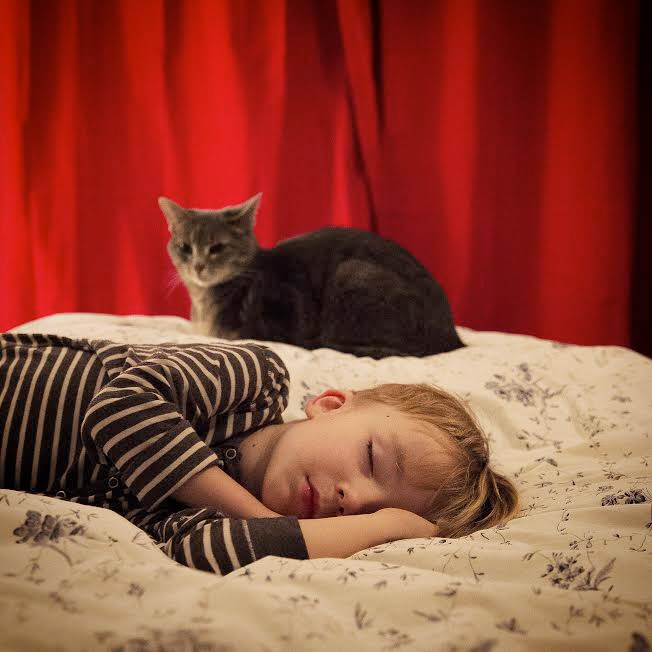 dosfamily-frank-sleeping