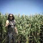 dosfamily-cornfields